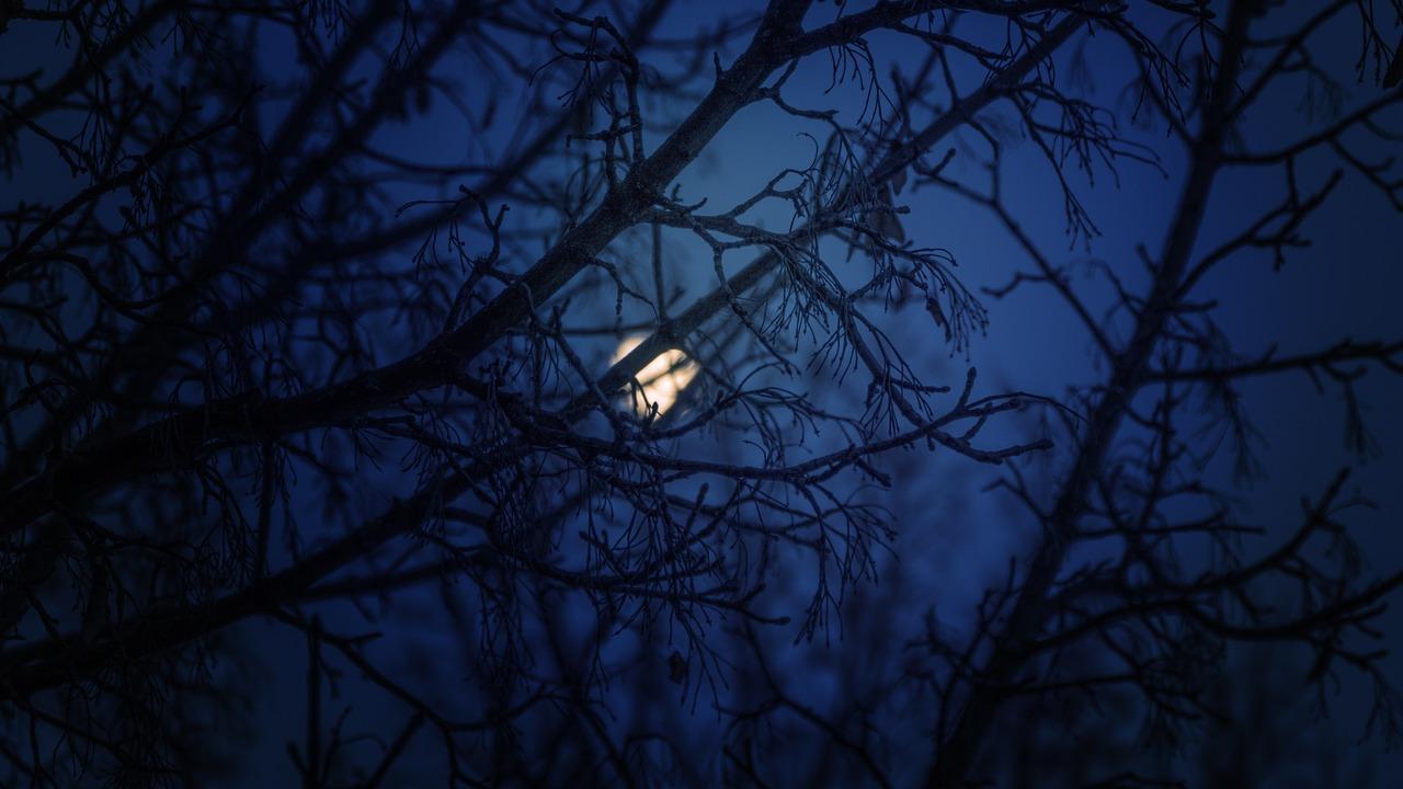 Lune relato terror